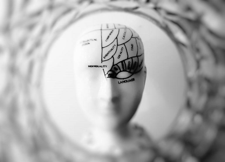 hoe werkt je brein